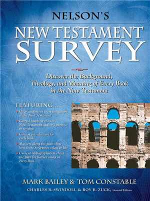 Download Nelsons New Testament Survey: Discovering the Essence, Background and Meaning about Every New Testament Book epub/mobi