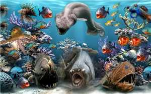 Download 25 Deep Blue Sea Animals Wallpapers Set 5